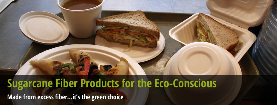 Sugarcane Fiber Products for the Eco-Conscious